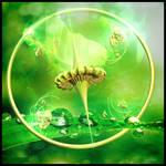 Water of verdancy