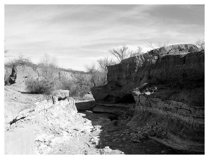 ::dry river:: by lagartotxpx