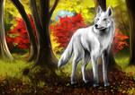Canadian autumn by Yokufo