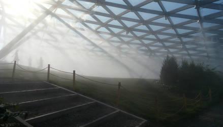 Fog by Blooming-Lynx
