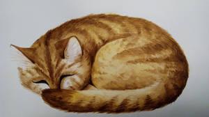 Sleeping cat by Blooming-Lynx