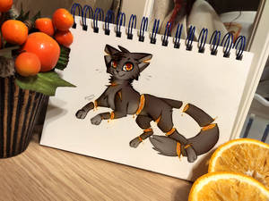 Day Eight - Fruit Cat
