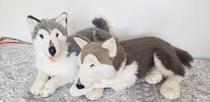 EJ classic collection plush husky collection