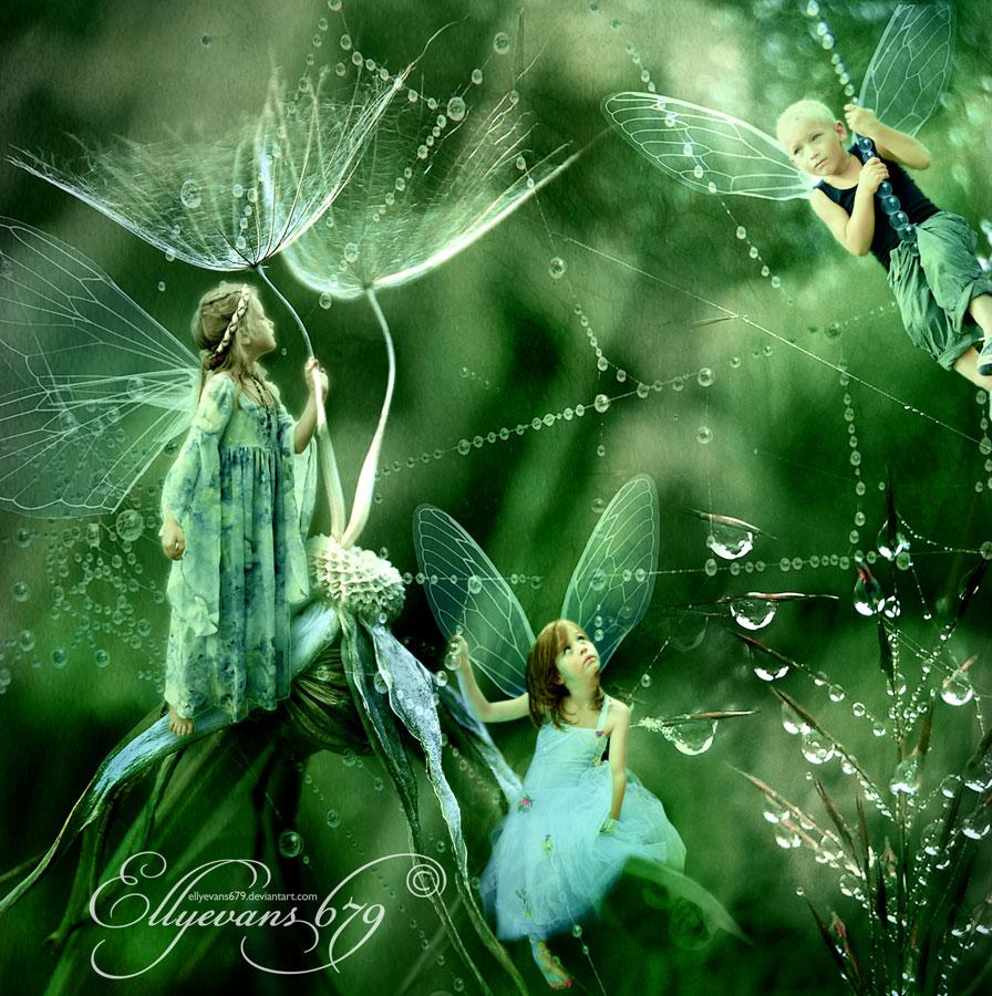 Dandelion Rain by