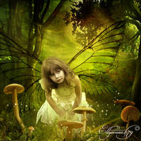 Fairy Forest 3