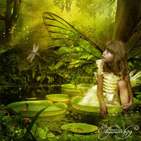Fairy Forest 2