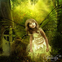 Fairy Forest 1 by Ellyevans679