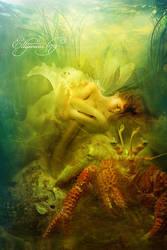 Totem Spirit - Crab