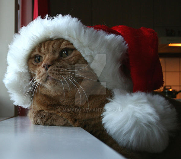 Merry Christmas 2007 by Mimado