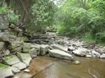 Rocky River Stock