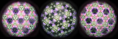 Flower Kaleidoscope Stock 3