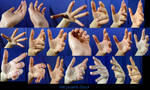 Hand Pose-Foreshortening/Perspective 2