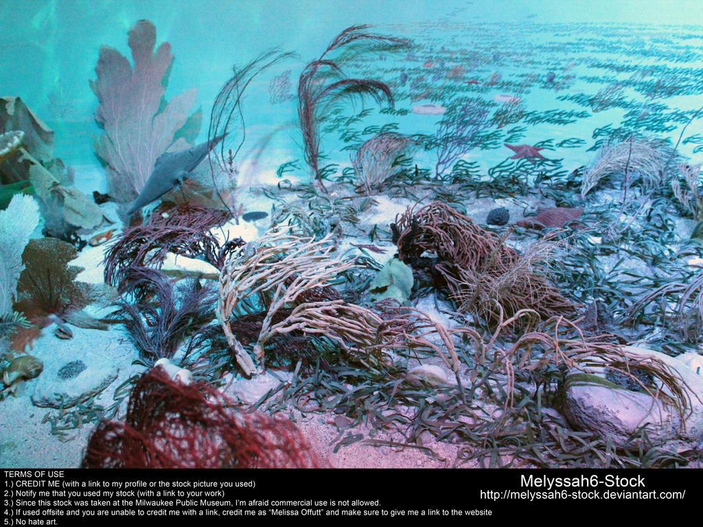 Ocean Floor Stock 1 by Melyssah6-Stock