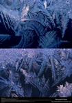 Ice Texture 18