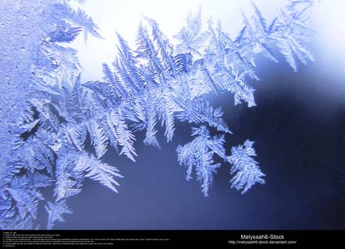 Ice Texture 23