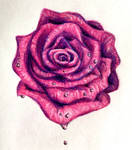 A rose for my mother