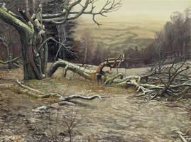 Wild Trees I - Bystrzyckie Mountains I by Fladrif