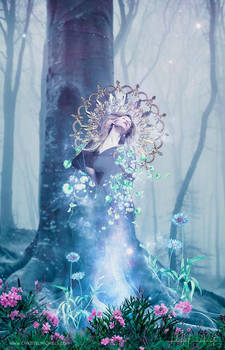 THE DRYAD Revisited version