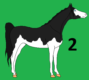 Furry Stable's Oreo: by PokemonGal16