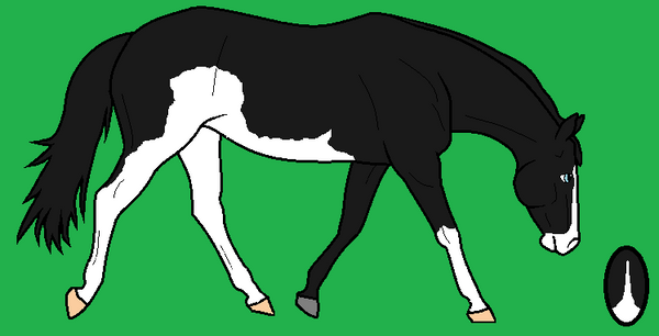 Furry Stable's Blackie: by PokemonGal16