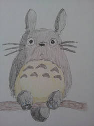 Totoro by LittleTorTor