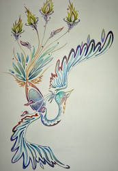Feather -In Color_ by Suzuki-Deus