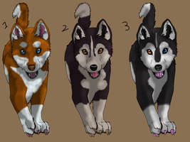 Husky adopts 2 CLOSED by Themystichusky