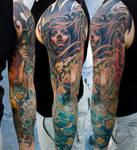 elements sleeve arm