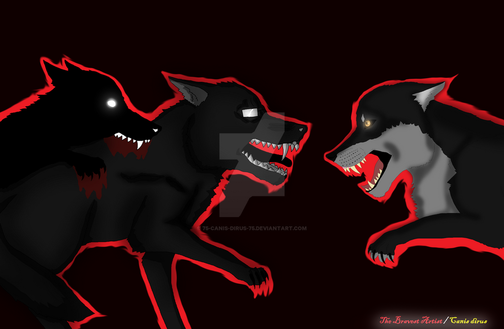 TribeTwelve [Request] Wolf Fight by 75-Canis-dirus-75 on DeviantArt