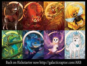 Card Designs for Animal Kingdoms