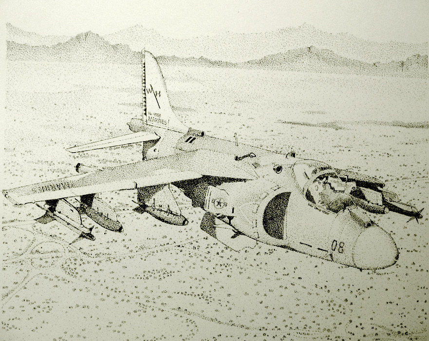 Harrier Pen and Ink by gbraden