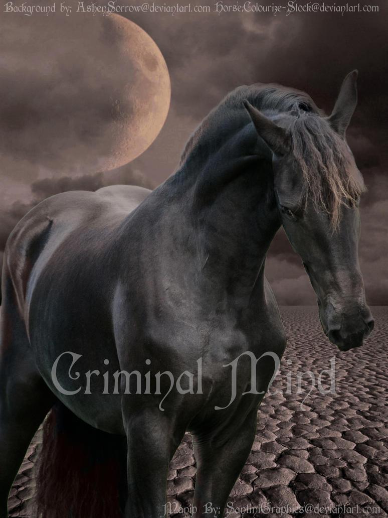 CriminalMind by SantiniGraphics