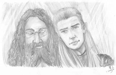 Legolas and Gimli- LOTR SOME