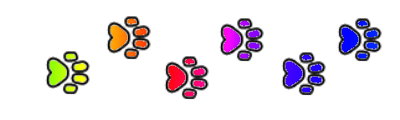 Pride cat paw prints