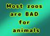 Animal stamp 2.