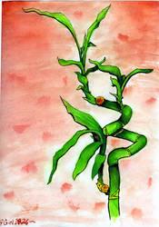 Bamboo by Silvia1826