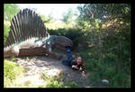 My friend the Dimetrodon