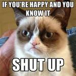 Grumpy Cat Meme 1