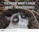 Grumpy Cat Meme 5