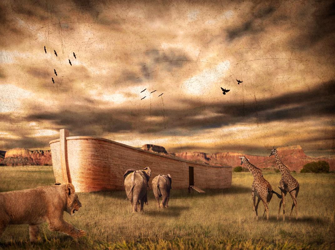 ark of Noah by robsonbatista on DeviantArt