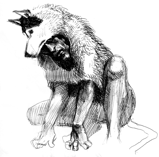 Finneren av Måten, Mysteriet av Algoritmeen Shaman_wolf_by_sonofamortician