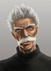 Silver Fang (One Punch Man) - Digital Painting
