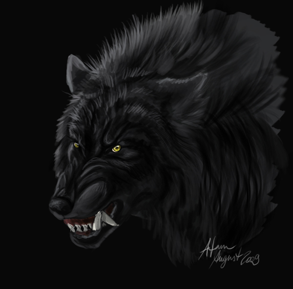 Wolf Face Doodle By Atan On Deviantart