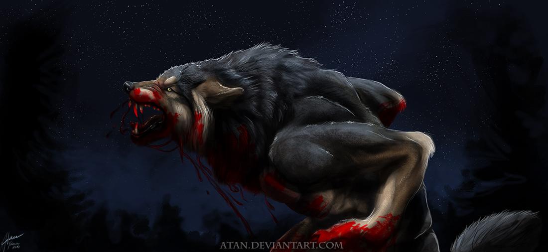 Волк злой скачать картинку  artodomru