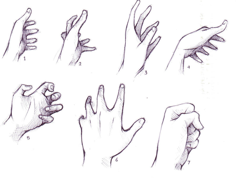 hand reference by alsei on DeviantArt