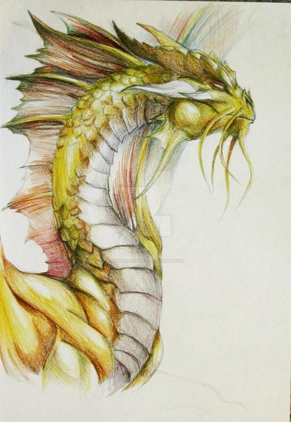 Gold Dragon Portrait