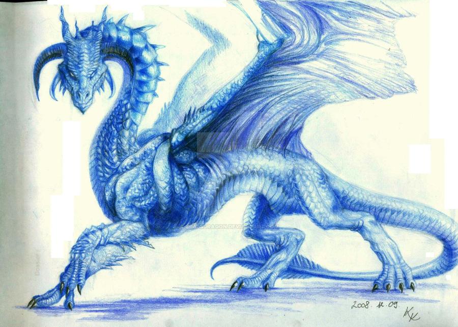 sapphire dragon   reference by brassdragon d1r1ij6