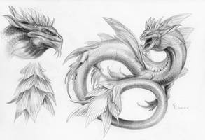 Commission - Sea Serpent Reference Sheet