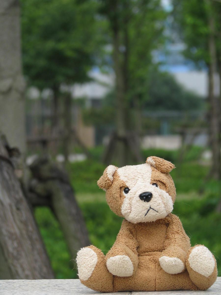 Cute Stuffed Puppy 2 by JimBobBillyJoeJang