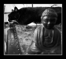 Untitled Buddha 2 by SpyderCS